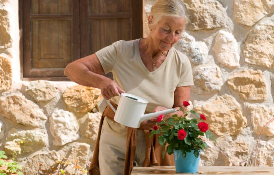 Summer Tips for Seniors